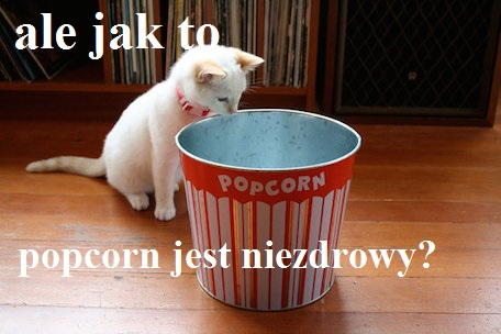 kitten-looking-into-popcorn-tub